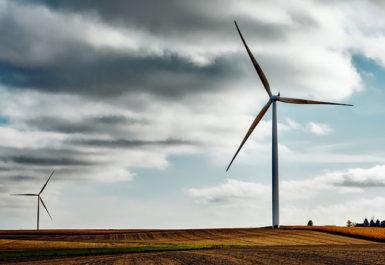 molinos de viento en un prado